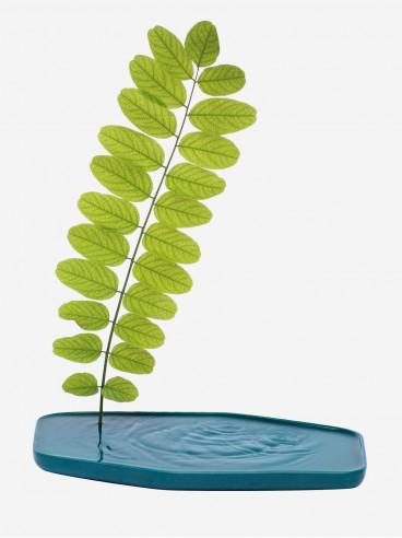 Vase Plan
