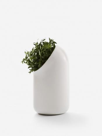 Ô Vase