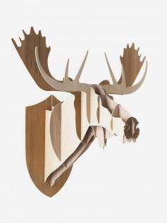 Trophée Moose random
