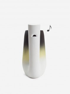Pan musical carafe